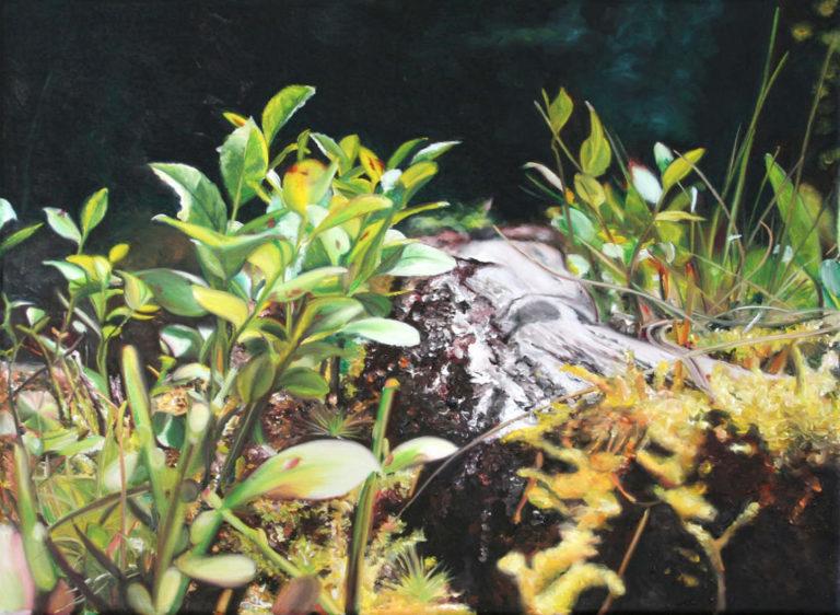 Blueberries root, 45 x 60 cm, 2014, Öl auf Leinwand