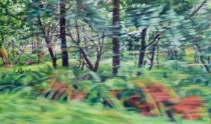 Street View VIII, 70 x 120 cm, 2018, Öl auf Leinwand
