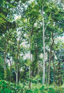 Paradise lost, 170 x 120 cm, 2008, Öl auf Leinwand